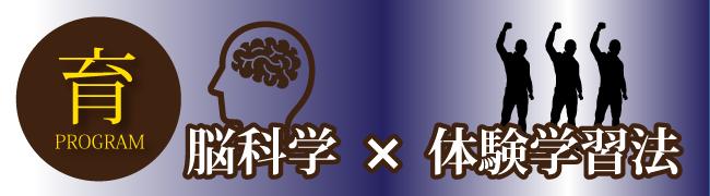 脳科学×体験